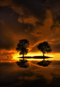 Time for Reflection by asheers
