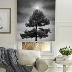 Beautiful Tree Printed Roller Blind Rollerblinds Homedecor Shades Blinds