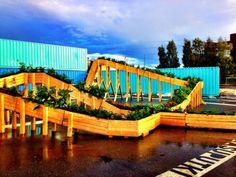Plantas podiam ser trocadas por passagem de bonde. Todo material arrecadado foi utilizado para construção de jardim urbano