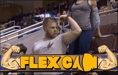 Do you even lift bro. [video]http://4gif.tumblr.com/post/117139142476/flex-cam-girl-serves-bro-forgifs