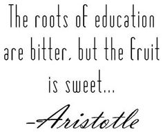 I tend to agree, but not sure Aristotle is consistent with 21st century learning practices.