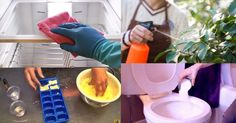 If you have a box of Borax you& no idea how effective it can be in your home and garden. Must check out these unbelievable Borax Uses! Borax Cleaning, Household Cleaning Tips, House Cleaning Tips, Cleaning Hacks, Diy Cleaners, Cleaners Homemade, Carpet Cleaners, Borax Uses, Clean My House