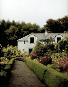 Irish cottage <3 My husband and I dream of living in Ireland and raising our family there.