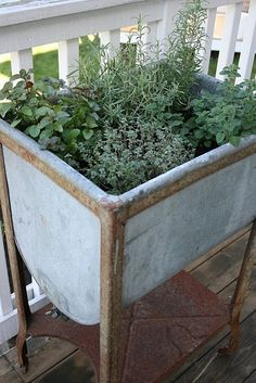 great repurpose-galvanized container for herbs at the beach. When herbs die, use it as a beer & wine cooler for gatherings on the beach.