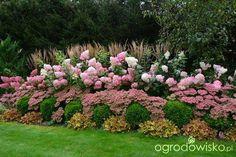 Organic gardening for healty food Hydrangea Garden, Pink Garden, Shade Garden, Dream Garden, Home Landscaping, Front Yard Landscaping, House Landscape, Landscape Design, Garden Drawing