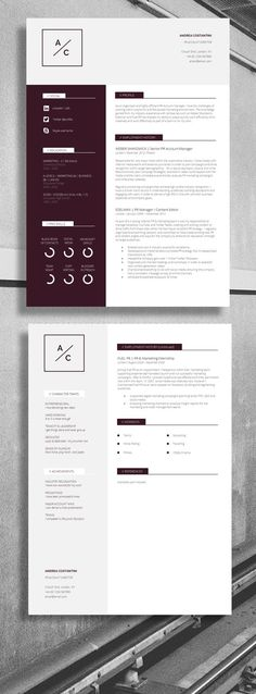 Professional CV / Resume - Strong Layout, suitable for... Accountant, Account Director, IT Director #Job #Resume: