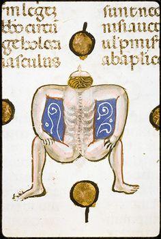 medieval 1man1jar Decretum Gratiani with the commentary of Bartolomeo da Brescia, Italy 1340-1345. Lyon, BM, Ms 5128, fol. 224r