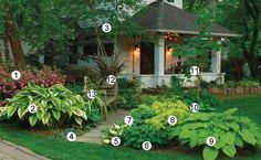 On the Cover of Issue 127 | Fine Gardening - great shade plantings with identification