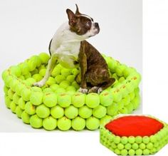 Tennis ball bed! We like this up-cycling stuff! Inventive , But I think my dogs would go Nuts !! trying to tear it apart for the balls