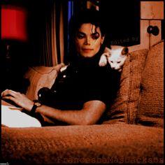 Michael Jackson et son chat Jackson Family, Janet Jackson, Celebrities With Cats, Celebs, Animal Gato, Image Chat, Son Chat, Paris Jackson, Lisa Marie Presley