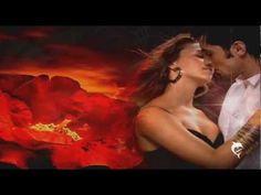 Tränen in dieser Nacht - The Cherries - YouTube