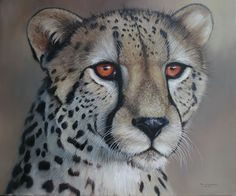 The official website of International Wildlife Artist, Pip McGarry. Renowned for his stunning oil paintings of big cats and African animals. Jungle Animals, Animals And Pets, Cute Animals, Small Wild Cats, Big Cats, Animal Paintings, Animal Drawings, Exotic Cats, Africa Art