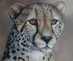Cheetah Portrait pip mcgarry