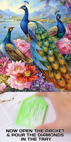 Now bring the painter in you come to life by creating this Peacock Beauty diamond painting Peacock Canvas, Watercolor Peacock, Peacock Wall Art, Peacock Painting, Dot Art Painting, Mandala Painting, Underwater Painting, Easy Canvas Art, Art Corner