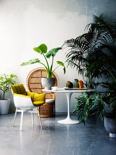 This+is+Happening:+Mexican+Modernism+via+@mydomaine