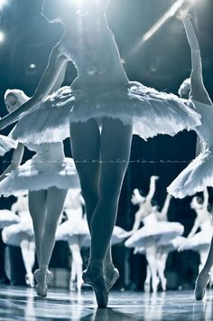 "yoiness: © Nikolay Krusser ""Swan Lake"", Mikhailovsky Ballet"