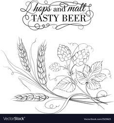 Illustration of Golden wheat and hop on sepia. vector art, clipart and stock vectors. Vine Tattoos, Back Tattoos, Wheat Drawing, Wheat Tattoo, Hop Tattoo, Hops Vine, Zentangle, Beer Hops, Tattoo Project