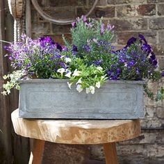 Simple Metal Window Boxes Design For Flower Basket - Pflanzideen Metal Window Boxes, Fall Window Boxes, Window Planter Boxes, Planter Ideas, Container Flowers, Container Plants, Container Gardening, Gardening Zones, Gardening Courses