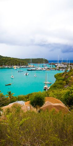Antigua | Explore the blues of Antigua's lush bay, complete with sailboats, shoreside adventures, and more.