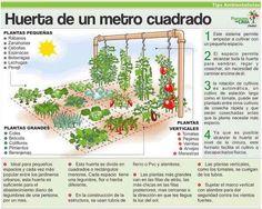 Sistema para hacer una huerta de un metro cuadrado Características:  Este sistema permite empezar a cultivar con un pequeño espacio. El espacio permite alcanzar toda la huerta para...