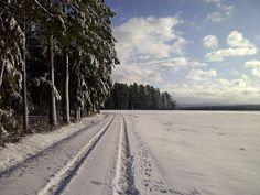 near Zwerenberg, Black Forest, Germany