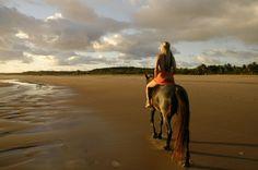 Romantic horse rides along the beach. Visit www.mozambique.co.za