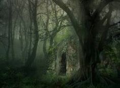 Ancient Cottage, The Enchanted Wood.....--- Forrest by Wyldraven