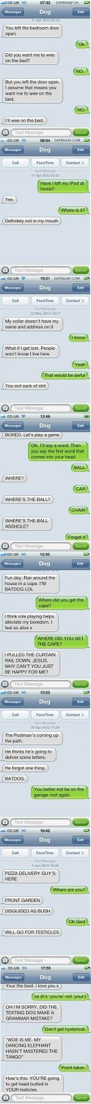 Top 10 Hilarious Text Messages ft. Funny Dogs