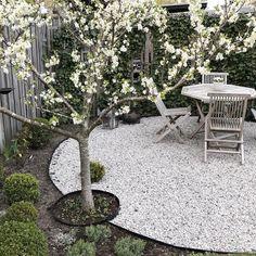 Uteplats Matplats – Garden is craft Small Gardens, Outdoor Gardens, Landscape Design, Garden Design, Garden News, Garden Types, Foliage Plants, Outdoor Landscaping, Dream Garden