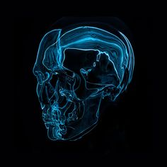 Artificial Anatomy 2 on Behance