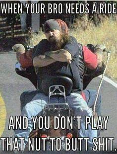 Old Classic Harley-Davidson Motorcycles Memes Humor, Man Humor, Funny Jokes, Hilarious, Funny Gifs, Funny Pranks, Funny Cartoons, Videos Funny, Funny Texts