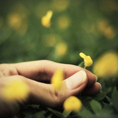 """""""Meditação é simplesmente ser, sem fazer nada — nenhuma ação, nenhum pensamento, nenhuma emoção. Você simplesmente é, e isso é um puro deleite. De onde vem esse deleite quando você não está fazendo nada? Ele não vem de lugar nenhum, ou, vem de toda parte. Ele é incausado, porque a existência é feita de uma matéria chamada alegria."""" OSHO"""
