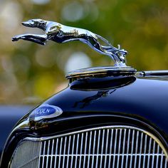 ...the famous Lincoln greyhound hood ornament...