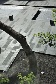 coyoacan-corporate-campus-by-dlc_architects-24 « Landscape Architecture Works | Landezine