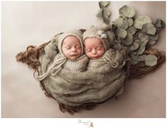 An artistic and fine art image of twin babies during their newborn session captured by Rhode Island photographers of Massart Photography
