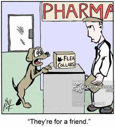 alternative viagra products