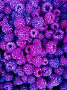 Want to dive in and gorge myself - purple berries.
