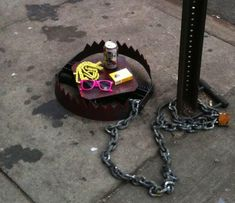 Hipster Trap - In New York, USA. Hahaha! This is perfect, I'm sure we would catch many hipsters.
