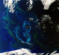 Blooming Sea off the Falkland Islands