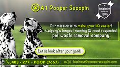 A1 Pooperscoopin