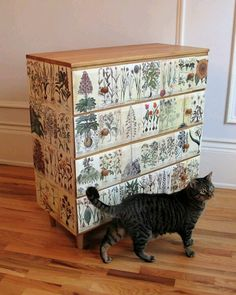 My weekend refinishing/decoupage project inspired by a Josef Frank cabinet. My cat, Simon, had to be in the picture too. :)
