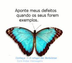 o refúgio das borboletas - Google+