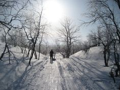 Winter day at Hetta-Pallas trail, Northern Finland.