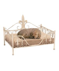 UMA Enterprises Cream Fleur-de-Lis Frame Pet Bed  Now pets can lie in the lap of luxury with their very own canine couture pet bed that features a fleur de lis frame. All that's missing is a butler to feed Fido bacon bits after a 3 o'clock nap.   25'' W x 18'' H Iron / polyester / cotton Spot clean Imported elegant chihuahua yorkie maltese dogs puppies dog bed