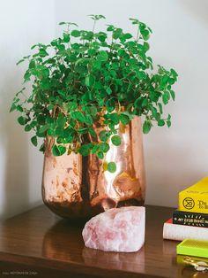 05-decoracao-aparador-cristal-planta