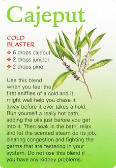 """Congestion/Cold Buster {Cajeput}: Hot bath try this, """"D""""ebbie. Cajeput oil"""