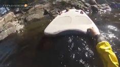 Un homme sauve un écureuil, bloqué au milieu d'une rivière