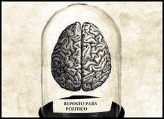 cerebro de recambio