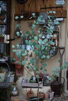 Garden Trees, Garden Plants, Indoor Plants, House Plants, Baumgarten, Nature Plants, Green Rooms, Green Garden, Green Flowers