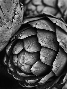 Artichokes B by cdodkin, via Flickr